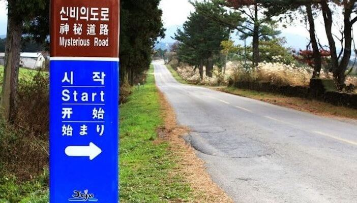 mysterious road jeju